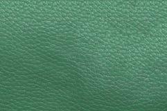 Ljus - grön hud som är strimmig Läder texturerar Royaltyfria Foton