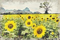 Ljus gul solros, Thailand Digital Art Impasto Oil Paint royaltyfri bild