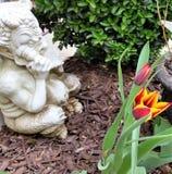 Ljus guling och den röda tulpan bredvid den vita murbrukpannan med flöjten och andra gräsplaner i vårträdgård bäddar ned Royaltyfri Fotografi