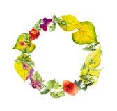 Ljus höstkrans Blommor gulingsidor Blom- vattenfärggräns Arkivbild