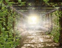 Ljus i himmel Väg till GoCosmic som läker energi royaltyfri fotografi