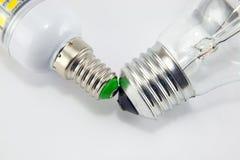Ljus isolerade kula och LEDD lampa på vit Royaltyfria Foton