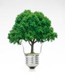 Ljus kula för Retro tappning med det gröna trädet överst på vit bakgrund Royaltyfri Foto
