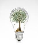 Ljus kula för Retro tappning med dollar- och pengarträdet överst på vit bakgrund Fotografering för Bildbyråer