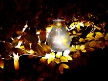 Ljus kula i darken Royaltyfria Foton