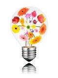 Ljus kula med den isolerade insidan för växa för blommor Royaltyfri Fotografi
