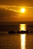 ljus ljus morgon Arkivbilder