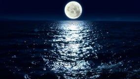 Ljus måne för sjö och för måne stock video