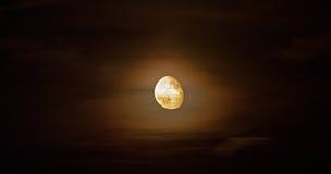 ljus moon Royaltyfri Bild