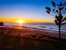 ljus morgon Arkivfoto