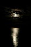 ljus natt Royaltyfria Bilder