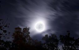 ljus natt för moon för oklarhetsfalllövverk royaltyfria foton