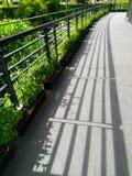 Ljus- och skuggabalkongen och den gröna växten går banan Arkivbild