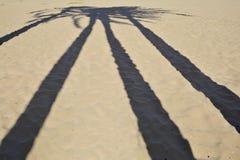 Ljus och skuggor på stranden Fotografering för Bildbyråer