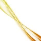 Ljus orange sommarswooshlinje prickbakgrund Royaltyfri Bild