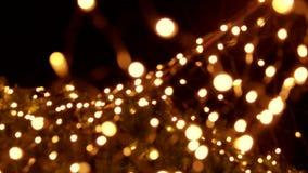 Ljus på trädet stock video
