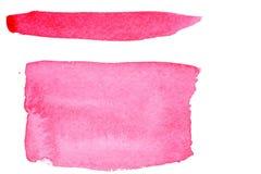 ljus pink Fotografering för Bildbyråer