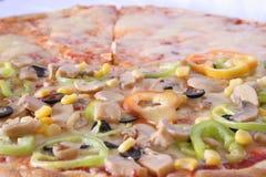 Ljus pizza Arkivbild