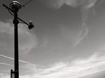 Ljus pol för gata på vänstert med seagullen Arkivbilder