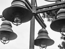 Ljus pol för svartvit tappning Arkivbilder