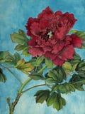 Ljus röd pion royaltyfri illustrationer