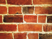 ljus röd vägg för tegelsten Arkivfoto