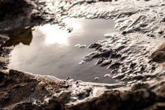 Ljus reflexion för sol på vattenyttersida Royaltyfria Foton