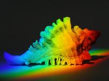 ljus refraktion Arkivbilder