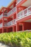 Ljus rosa byggnad med grönska, San Pedro, Belize arkivbilder