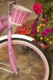Ljus rosa färgcykel och korg med färgrika blommor Royaltyfria Bilder