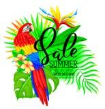 Ljus sammansättning för sommarförsäljning med papegojablommor och sidor Fotografering för Bildbyråer