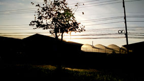 Ljus skiner växthuset i afton Royaltyfri Bild