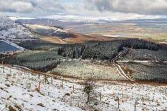 Ljus snö över fält, kullar och träd Dal av Neath, södra W royaltyfri fotografi