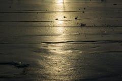 Ljus solig dag i Antarktis Arkivfoto
