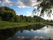 Ljus solig sommardag flod för Ñ-alm Kusterna är bevuxna med gräs arkivfoto