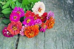 Ljus sommar blommar på en gammal träyttersida bakgrund blommar sommar Arkivbild