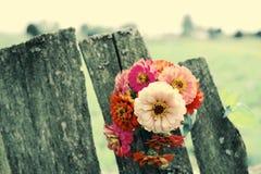 Ljus sommar blommar på en gammal träyttersida bakgrund blommar sommar Arkivfoton