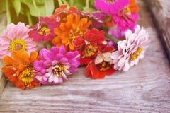Ljus sommar blommar på en gammal träyttersida bakgrund blommar sommar Royaltyfria Foton