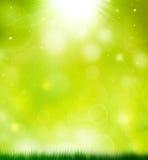 Ljus sommarbakgrund Arkivbilder