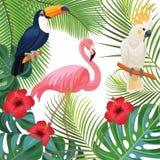 Ljus sommarillustration med tropiska växter och exotiska fåglar Royaltyfria Foton