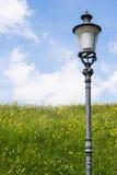 Ljus stolpe på ett fält nära Winterthur Schweiz Arkivbilder