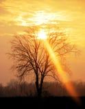 ljus stråle Royaltyfri Fotografi