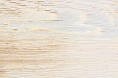 Ljus textur av björkkryssfaner, abstrakt bakgrund Arkivbilder