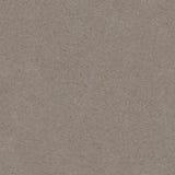 ljus textur för asfalt Royaltyfria Foton