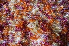 ljus textur Stucken torkduk utsmyckat garn Buculent tråd royaltyfri foto