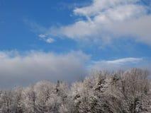 Ljus tidig vinterdag i bergen av sydliga New Hampshire Arkivbild