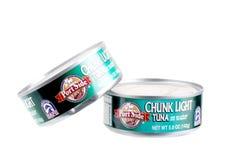 Ljus tonfisk Fotografering för Bildbyråer