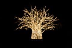 ljus tree Royaltyfria Foton