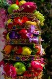 Ljus uppsättning av olika sorter av mogen frukt Vitaminkomplex royaltyfri bild