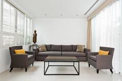 Ljus vardagsrum med den gråa soffan Fotografering för Bildbyråer